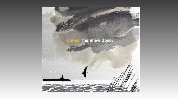 Camel ~ The Snow Goose 2013