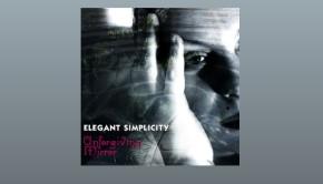 Elegant Simplicity ~ Unforgiving Mirror