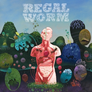Regal Worm ~ Use And Ornament