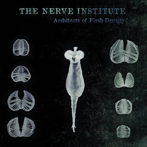 The Nerve Institute - Architects of Flesh-Density