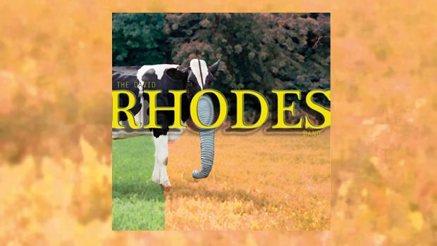The David Rhodes Band - The David Rhodes Band