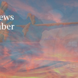 TPA November News 2015