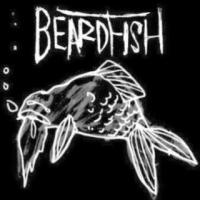 Beardfish logo