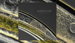 Wolverine - Machina Viva