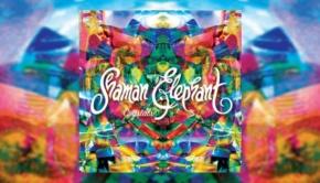 Shaman Elephant - Crystals