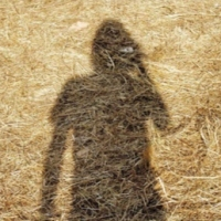Steven Wilson - Unreleased Electronic Music