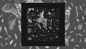 Plini - Sunhead EP