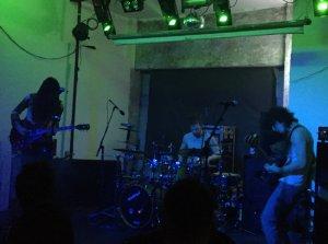 electric octopus 22-03-18