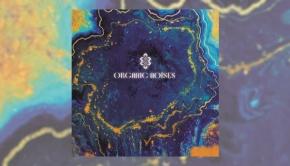 Organic Noises - Organic Noises