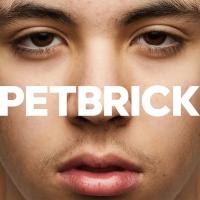 Petbrick – I