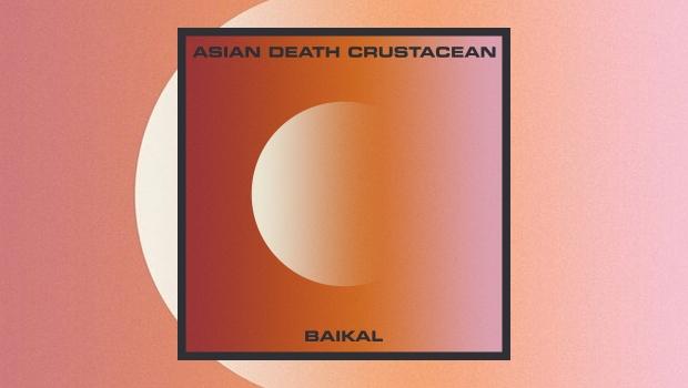 Asian Death Crustacean - Baikal