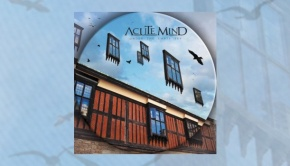 Acute Mind - Under The Empty Sky