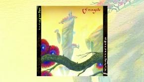 Fragile - Golden Fragments