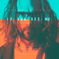 Dušan Jevtovic – If You See Me