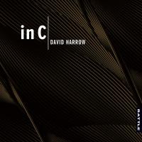 David Harrow – In C