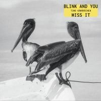 Timo Kämäräinen – Blink And You Miss It