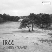 Shining Pyramid – Tree