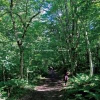 Kiku Latte – Fantasia [EP]