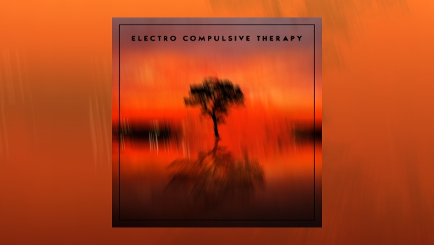 Electro Compulsive Therapy - Electro Compulsive Therapy