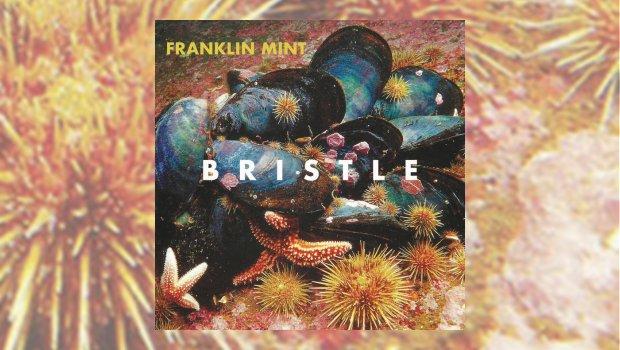 Franklin Mint - Bristle