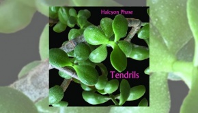 Halcyon Phase - Tendrils