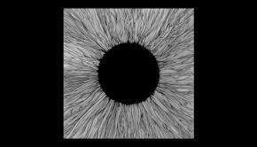 VOLA - Witness